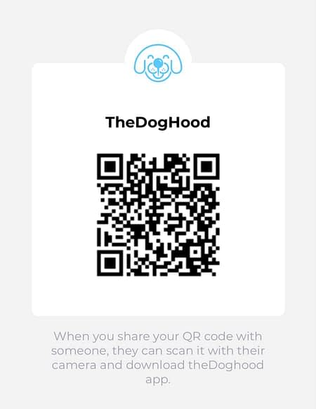 theDgHood QR Code