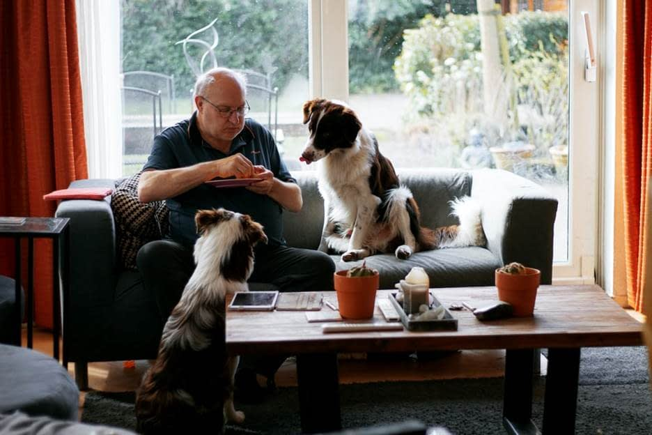 Dogs enjoying a treat with the owner on a sofa