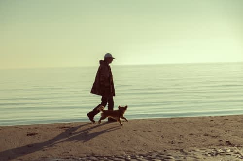 A person walks with their dog on the beach