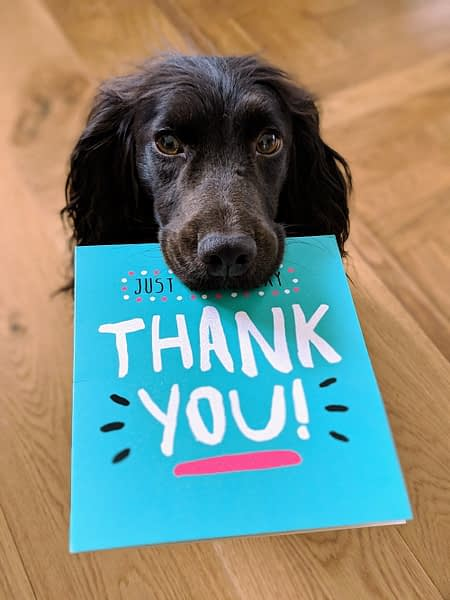 Dog giving a thank-you card to its owner